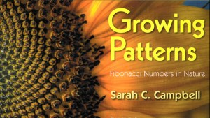 GrowingPatterns-Poster 300x169